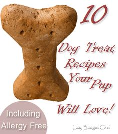 10 easy dog treat recipes - Haven't tried any of them but will save the pin for later!