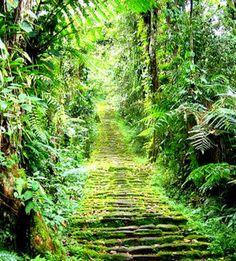 Camino Ciudad Perdida Paruqe Nacional del Tayrona Magdalena, Colombia
