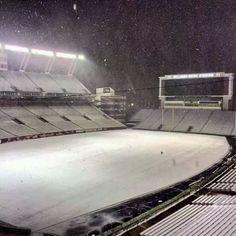 Williams-Brice snow covered! Beautiful!!!