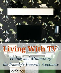 Living with TV - hid