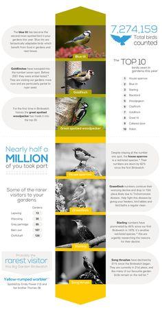 The Big Garden #Birdwatch 2014 results are in!