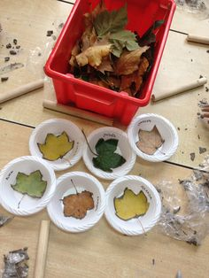 Cassie Liversidge- Leaf bowls. Once dry peel off the leaf, paint and remove from the bowl mould.