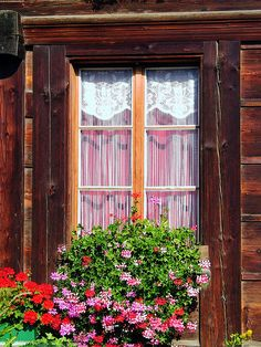 SWISS WINDOW
