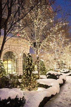 White Christmas lights sparkling