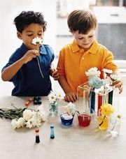 Turn your kitchen into a science lab with this fun DIY experiment!