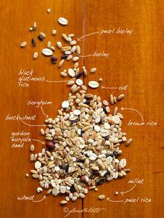 Multigrain Congee (Rice Porridge) by Food For Tots.