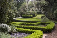 Pinewood Estate | Bok Tower Gardens