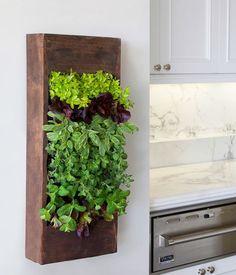 indoor herb planter ideas | eat well 101