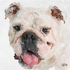 Bulldog | Vitaly Shchukin