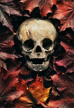 * Autumn Death Skull *