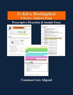 essay on theme to kill a mockingbird