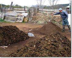 Soil Science Basics for Beginners