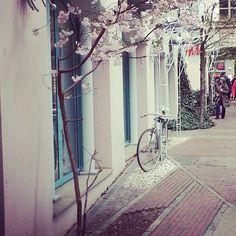 #belosophy #bikeshop #buenosaires #ride #bike #bicycle #bicicleta #berlin
