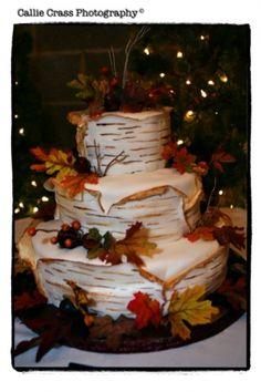 Birch Cake - Rustic Wedding Chic