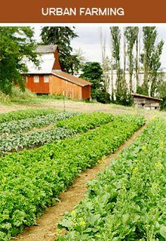 Zenger Farm classes for kids