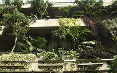 Barbican conservatory, London