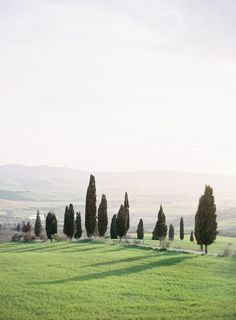 Italy's countryside//