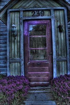 love love love purple
