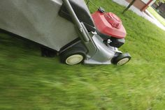 Mowing lawn with a push mower for 30 minutes - Burns 243 calories