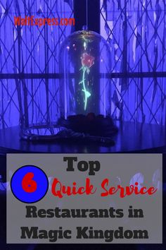 Top 6 Quick Service