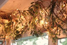 Isn't this romantic? I used grapevine and outdoor Christmas lights! Craft stores now sell grapevine in a bag that is much more pliable than if you pulled apart a grapevine wreath.