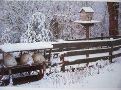 Seasons at Seven Gates Farm
