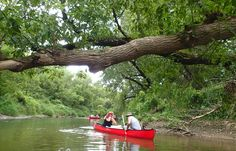 #OrganicValley employees canoeing and looking for trash. #sustainability