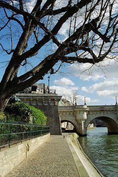 Paris, sus ríos y sus canales.... Los para pasear  la Seine