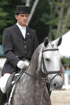 Lusitano VII, via Flickr.