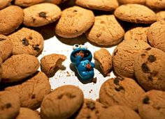 Best Day Of Cookie Monster #humor #lol #funny