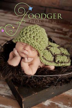 Baby turtle TOO CUTE!!!