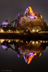 Expedition Everest Animal Kingdom, Walt Disney World. || Amazing ride, road in the first cart.