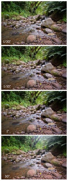 Detailed photography tutorial about shutter speed and motion, with several photo examples!