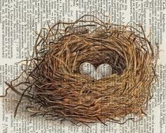 Nest on dictionary page.