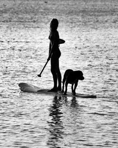 love paddle boarding...maybe I can master getting the pups on?! Something to practice!
