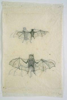 Kiki Smith, Untitled, 1999