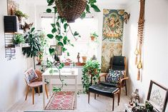 hanging plants, office rooms, hous, home offices