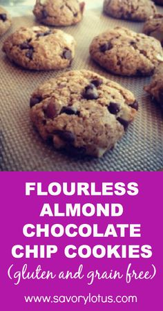 chocolate chips, flourless almond, almond butter paleo cookies, almond chocolate chip cookies, chocol chip, cooki gluten, almond cookies gluten free