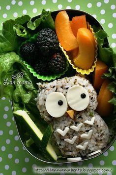 owl bento, bento box, bento lunch, foods, lunch boxes, food art, egg whites, owls, kid