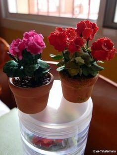 how to: geraniums