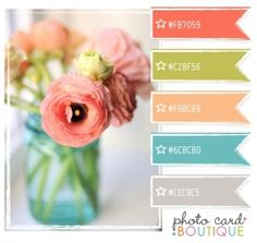 peach and grey color palette