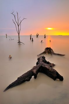 After life by Azri Suratmin,