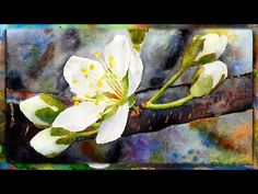 ▶ How to Paint the Cherry Blossom in Watercolor, Part 1 - YouTube