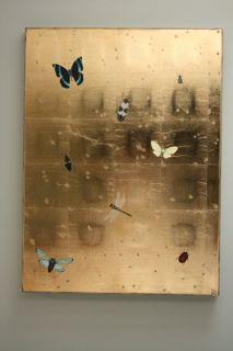 Bug panel  Kate Kelleher