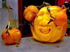 Revenge of the Vertically Challenged from the 2013 Pumpkin Carving Contest