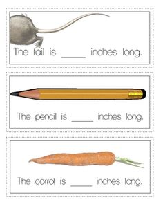 Mad About Measurement Freebie