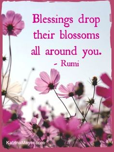 quotes bloom on pinterest anais nin plants and the rules