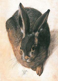 """Hare"" - Albrecht Durer, 1528, Northern Renaissance style animal painting"