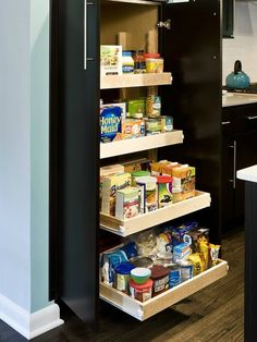 Genius! Roll Out Trays in a Tall Pantry Cabinet in Ultra-Modern Kitchen by RJK Construction Inc, http://www.facebook.com/pages/RJK-Construction-Inc/127047934007552  www.rjkconstructioninc.com