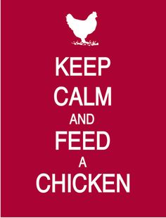 or, to become calm, feed a chicken